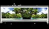 Экран под ванну «АРТ», Пальмы, 130см.