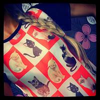Женская блузка из шифона Котята