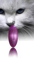 """Гель-лак RNK """"cats eye"""" №026"""