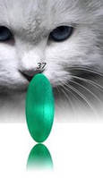 """Гель-лак RNK """"cats eye"""" №037"""