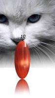 """Гель-лак RNK """"cats eye"""" №010"""