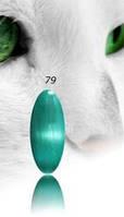 """Гель-лак RNK """"cats eye"""" №079"""