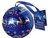 Конфеты шоколадные подарочные Sliwka Naleczowska Goplana 190г