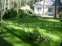 Семена трава для газона декоративная (1 кг упаковка)