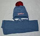 Комплект зимний Junior: шапка с шарфом для мальчика (AJS, Польша), фото 2