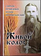 Живой колос. Святой Праведный Иоанн Кронштадтский.