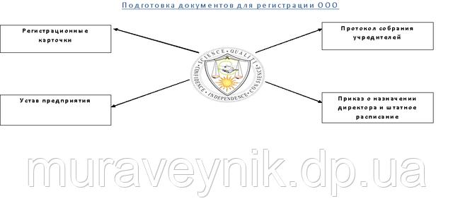 Регистрация ООО - подготовка документов