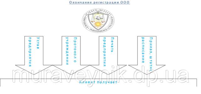 Регистрация ООО - итог