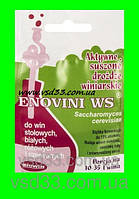 """Винные дрожжи Enovini WS """"Biowin""""(Польша)"""