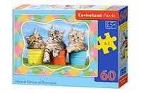 Пазлы castorland Три котенка 60 элементов В-06762