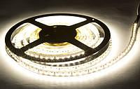 Светодиодная лента LED 3528 White 60R WW тепло белый цвет