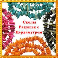 Сколы Ракушек с Перламутром. Код 6348 № 01-10