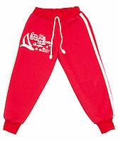 Спортивные штаны с начесом для девочки