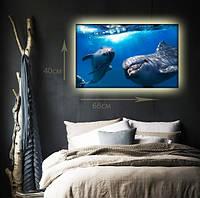"""Светодиодная картина """"Любовь и дельфины"""""""