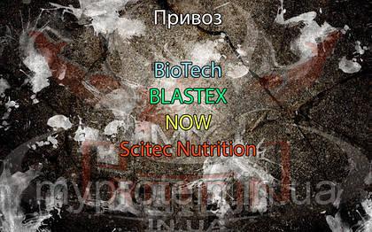 Поступление: BioTech, BLASTEX, NOW, Scitec Nutrition.