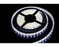 Светодиодная лента 5630 led, 5м, 11*2,4мм, 12В, яркость свечения 2400 Лм/м, 4 цвета в ассортименте