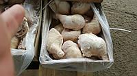 Тушка куриная в Киеве, курица суповая, несушка