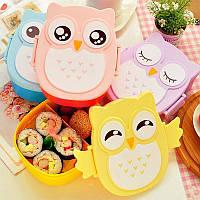 Ланч бокс Сова Lunch box Owl