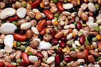 Фасоль: полный набор витаминов и минералов на каждый день!