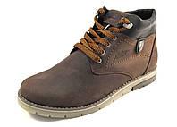 Ботинки  мужские с мехом ARROW кожаные, коричневые (р.41,44)
