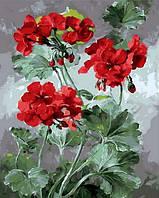Рисование по номерам Mariposa Роскошная герань Худ Коттерил Анне (MR-Q1050) 40 х 50 см