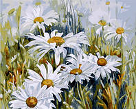 Картина по номерам Mariposa Ромашковое поле (MR-Q1439) 40 х 50 см
