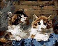 Раскраска по номерам Mariposa Милые котята Худ Адам Юлиус (MR-Q913) 40 х 50 см