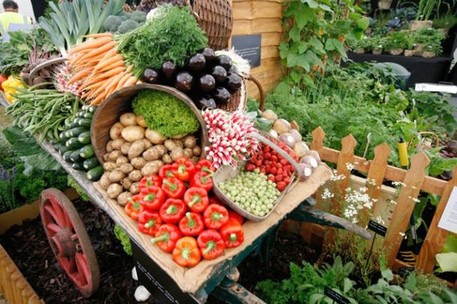 Товары для садоводства