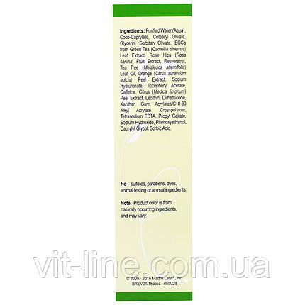 Madre Labs, Camellia Care, крем для кожи с зеленым чаем EGCG, против старения, увлажняющий, фото 2