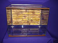 Террариум 60х50х40 см. для эублефаров