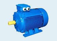 Электродвигатели АИР 3000об/мин (2 полюса)