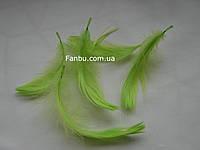 Яркие декоративные салатовые перья в пакете(1уп 120-130перьев), фото 1