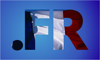 Регистрация Французких доменов