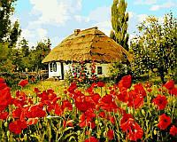 Картины раскраски по номерам 40×50 см. Цвітуть маки