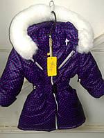 Зимняя куртка девочка мелкий горох 92,98, 104 рост