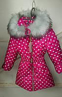 Зимняя куртка девочка Горох-а1, (128 рост)