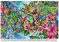 "Схема под бисер ""Пестрые бабочки"""