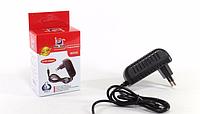 Адаптер MICRO (250), универсальное зарядное устройство, сетевое Micro USB зарядное устройство