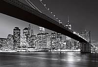 Фотообои на стену: Горизонт Манхэттена, 366х254