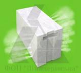 Газоблок Стоунлайт (Бровары) паз-гребень 300x200x600 Д500, фото 2