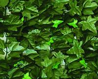 Декоративное зеленое покрытие Engard Молодой вьюнок 100x300 см
