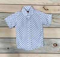 Рубашка с коротким рукавом на мальчика  KidsMod белая нарядная Турция 1-4 года