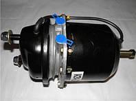 Тормозная камера даф ман энергоаккумулятор енергач daf 24\24 диск