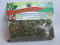 Трава Мелисы при нервной слабости, мигрени, бессоннице, болезненных менструациях