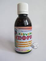 """""""Нефрина"""" для лечения пиелонефрита, гломерулопиелонефрита, мочекаменной болезни,кисты почек"""