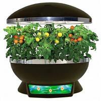 Домашняя грядка овочная