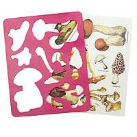 Трафареты пластиковые листья и грибы 2 шт