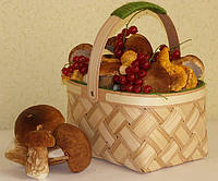 Упаковка для органичеcких продуктов