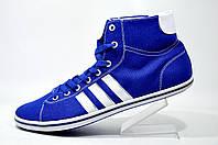 Кеды мужские Adidas Neo, Blue