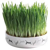 Trixie TX-42341 миска керамическая для травы и семена 50гр - лакомство для котов и кошек